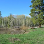 Steamboat Real Estate lot for sale